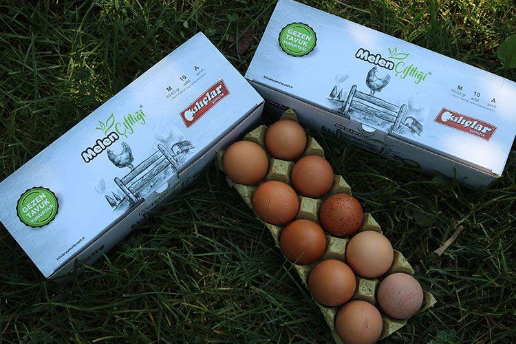 Gezen Tavuk Yumurtası